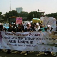 world-veterinary-day2009