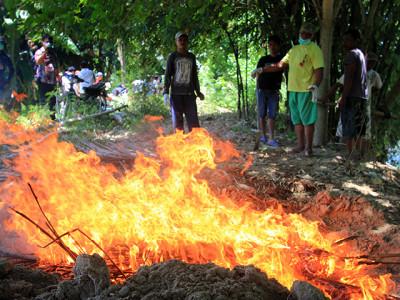 Petugas Dinas Peternakan memusnahkan bangkai sapi terduga antraks dengan cara dibakar di Tenilo, Kabupaten Gorontalo, Gorontalo, Rabu (30/8).
